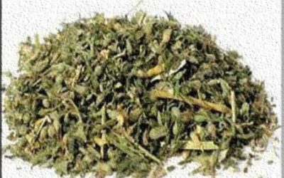 مخدر الفودو اخطر انواع المخدرات